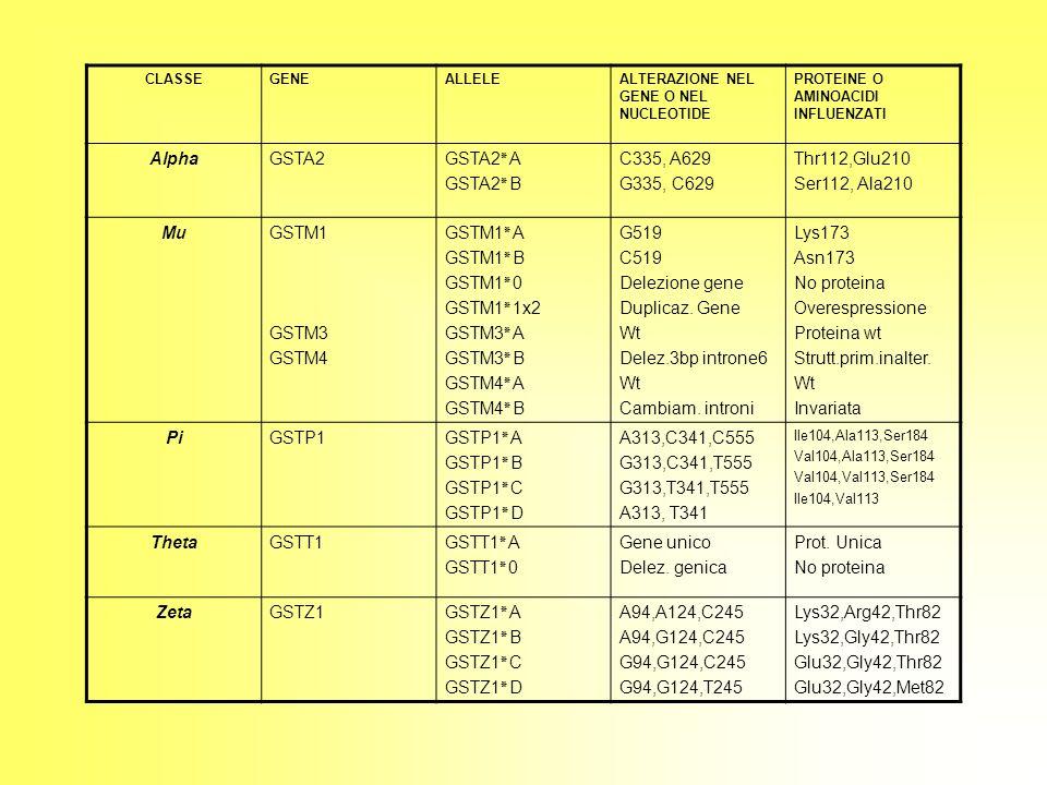 Alpha GSTA2 GSTA2٭A GSTA2٭B C335, A629 G335, C629 Thr112,Glu210