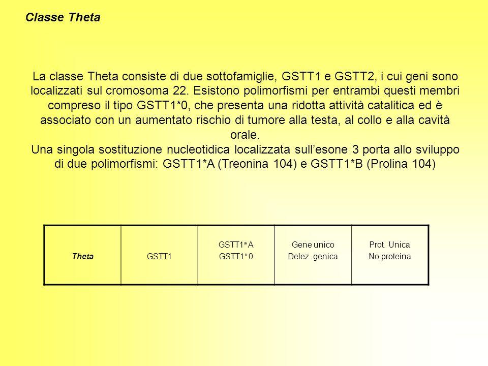 Classe Theta