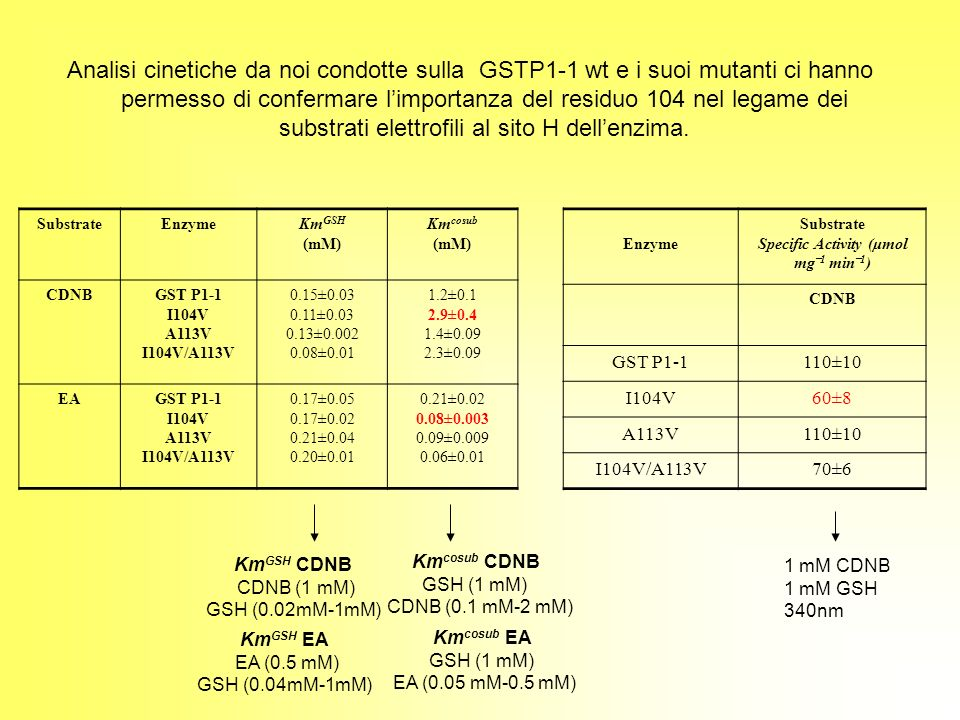 Specific Activity (μmol mg‾1 min‾1)