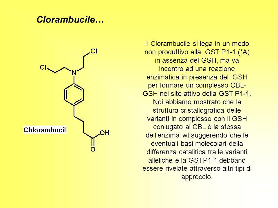 Clorambucile…