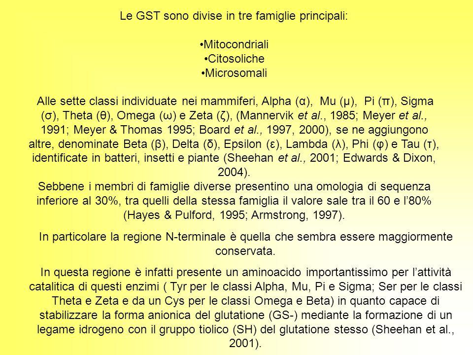 Le GST sono divise in tre famiglie principali: