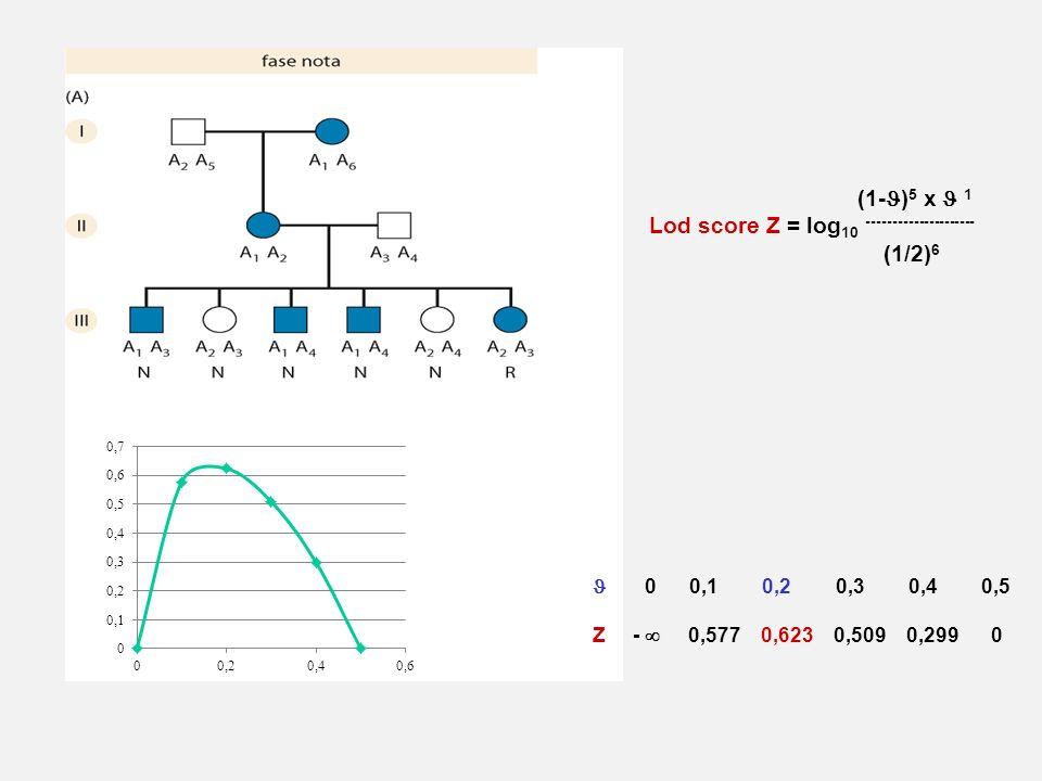 Lod score Z = log10 --------------------- (1/2)6