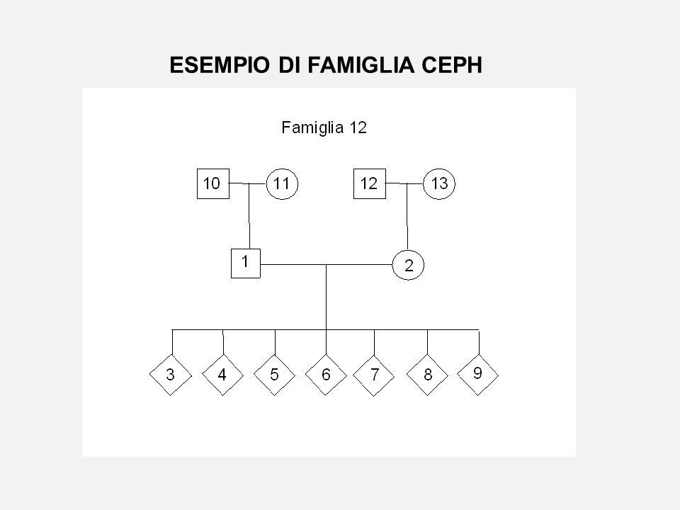 ESEMPIO DI FAMIGLIA CEPH