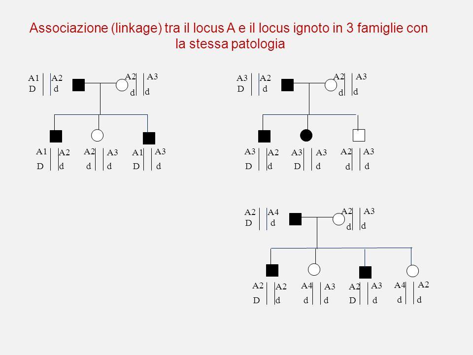Associazione (linkage) tra il locus A e il locus ignoto in 3 famiglie con