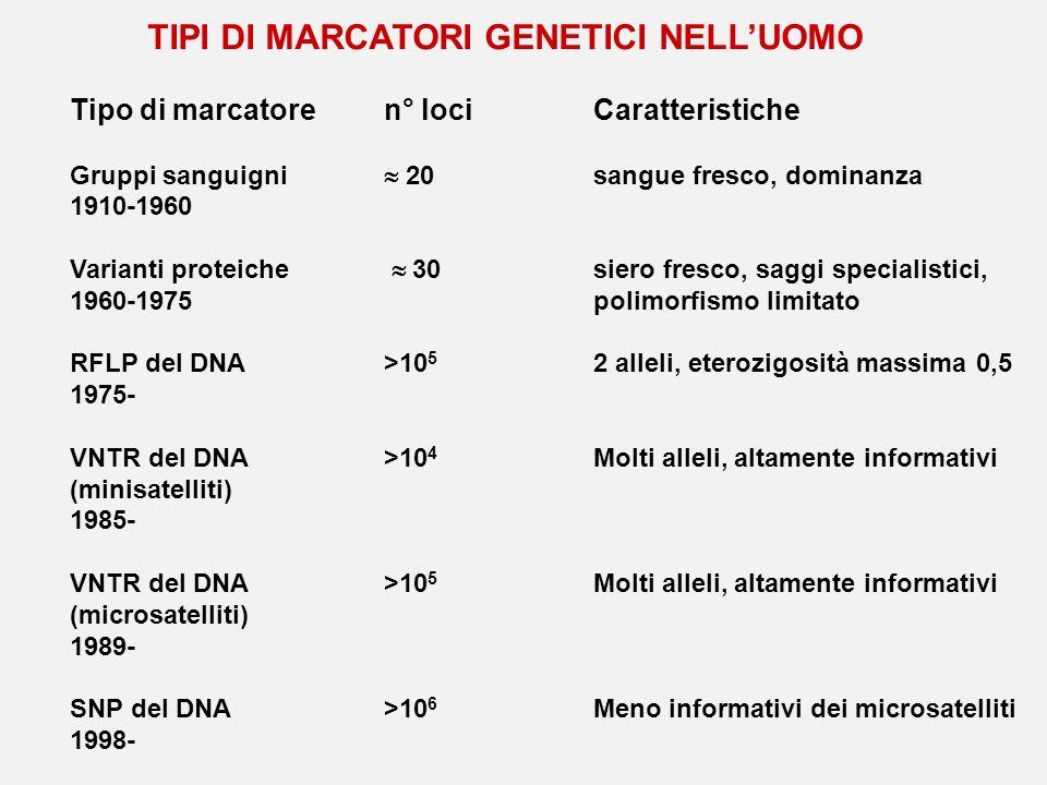 TIPI DI MARCATORI GENETICI NELL'UOMO