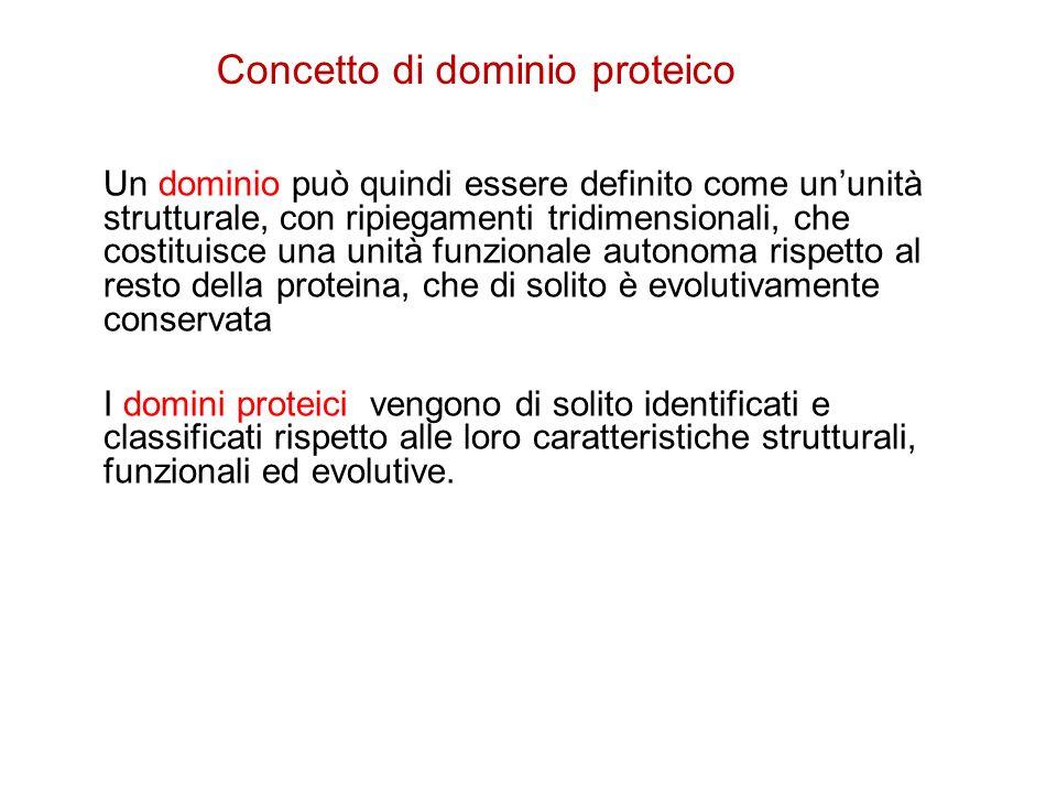 Concetto di dominio proteico