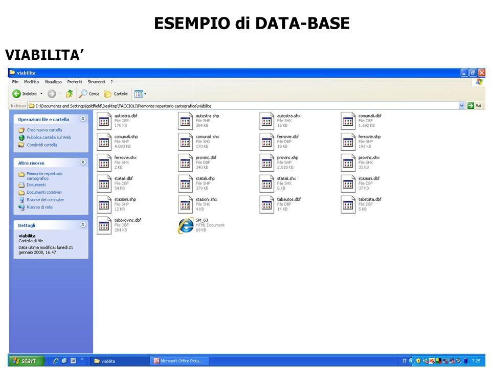 ESEMPIO di DATA-BASE VIABILITA'