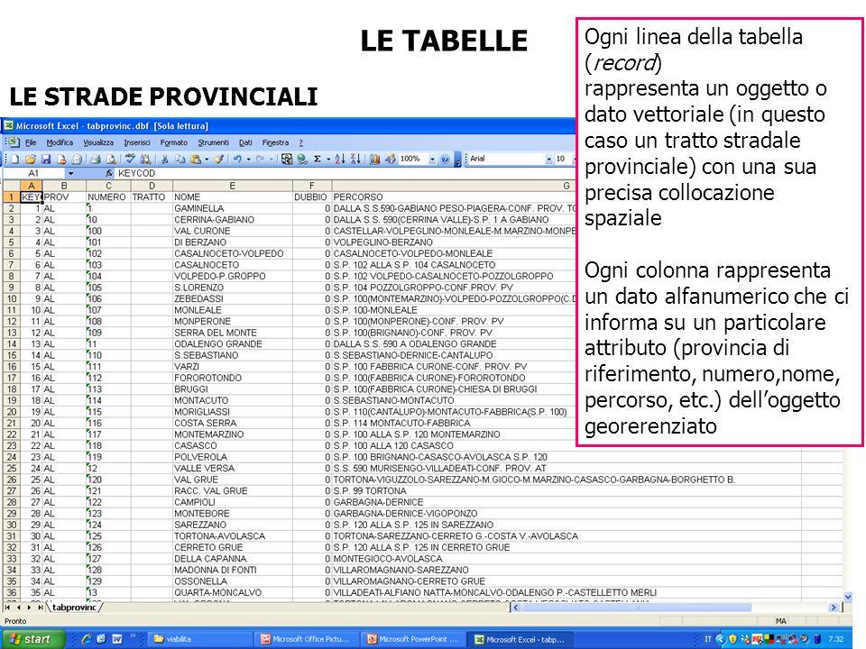 LE TABELLE LE STRADE PROVINCIALI Ogni linea della tabella (record)
