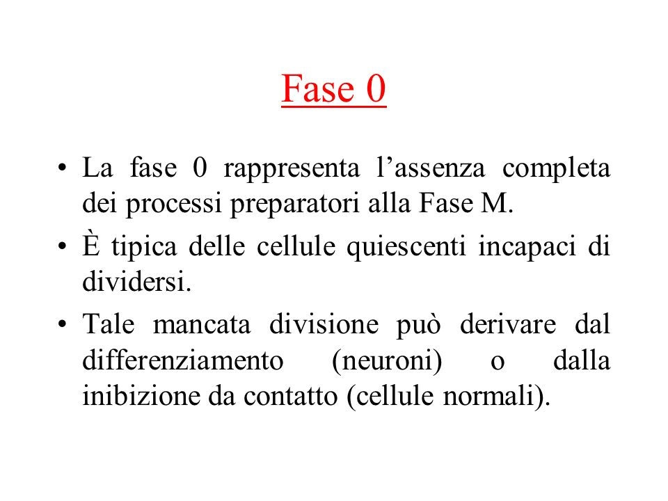 Fase 0 La fase 0 rappresenta l'assenza completa dei processi preparatori alla Fase M. È tipica delle cellule quiescenti incapaci di dividersi.