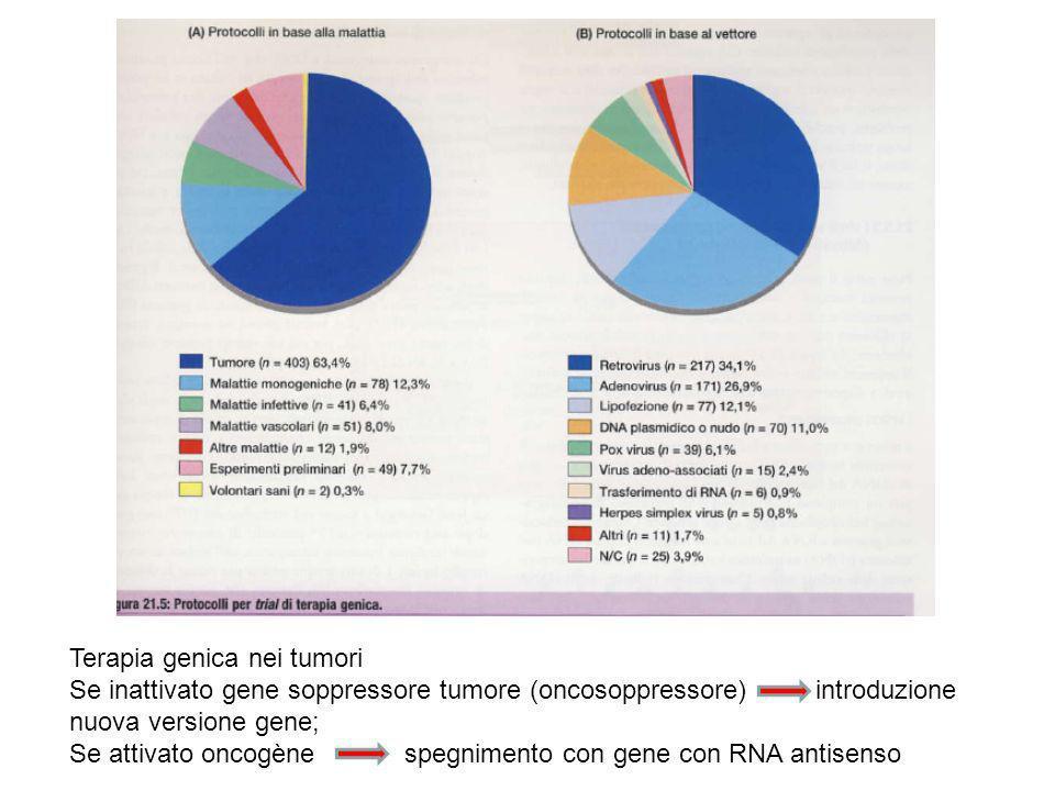 Terapia genica nei tumori