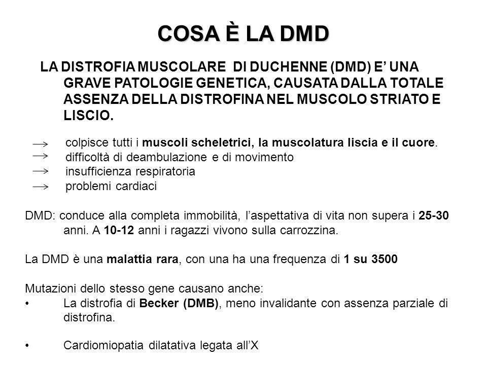 COSA È LA DMD