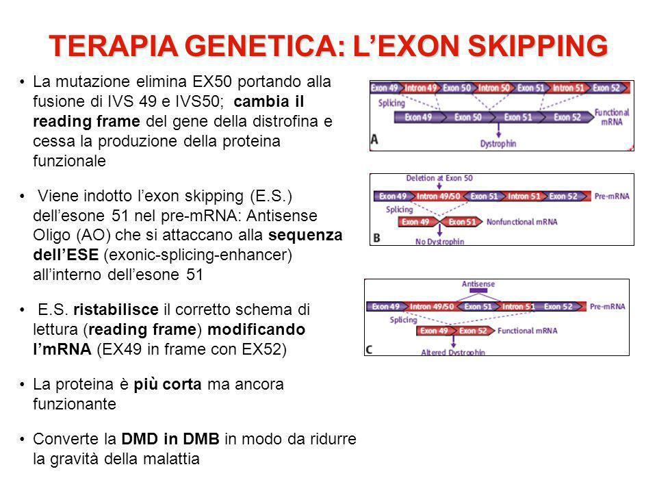 TERAPIA GENETICA: L'EXON SKIPPING