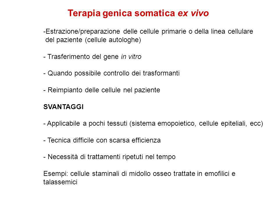Terapia genica somatica ex vivo