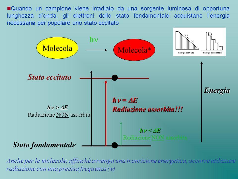 hn Molecola Molecola* Stato eccitato Energia Stato fondamentale
