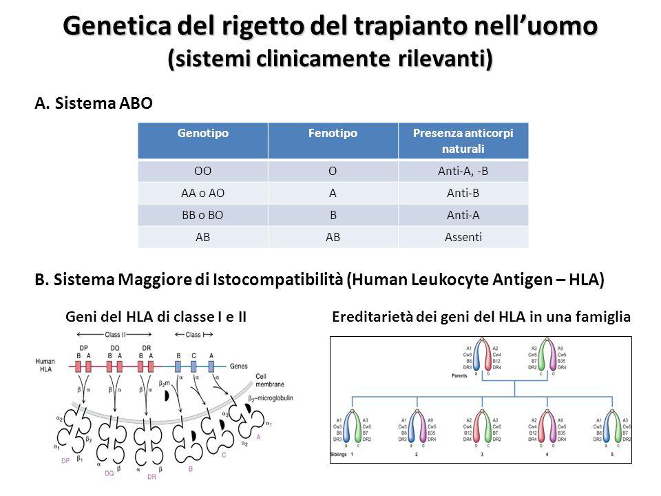 Genetica del rigetto del trapianto nell'uomo
