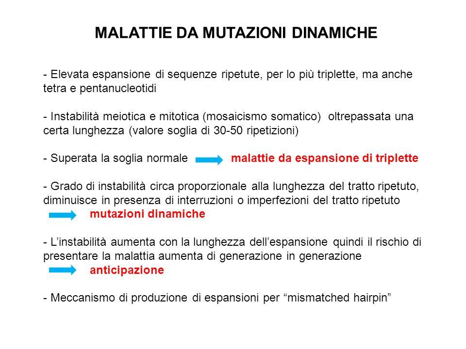 MALATTIE DA MUTAZIONI DINAMICHE