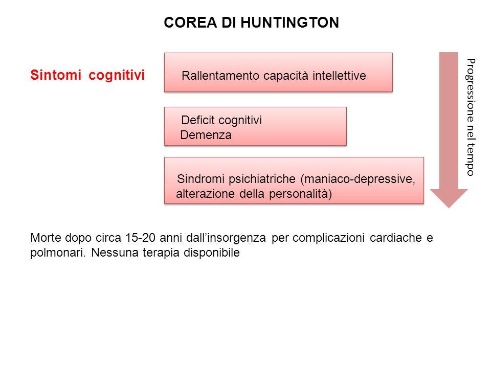 COREA DI HUNTINGTON Sintomi cognitivi Rallentamento capacità intellettive. Deficit cognitivi.