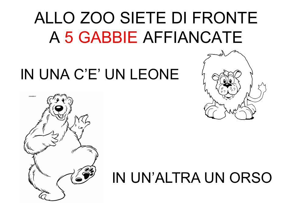 ALLO ZOO SIETE DI FRONTE A 5 GABBIE AFFIANCATE