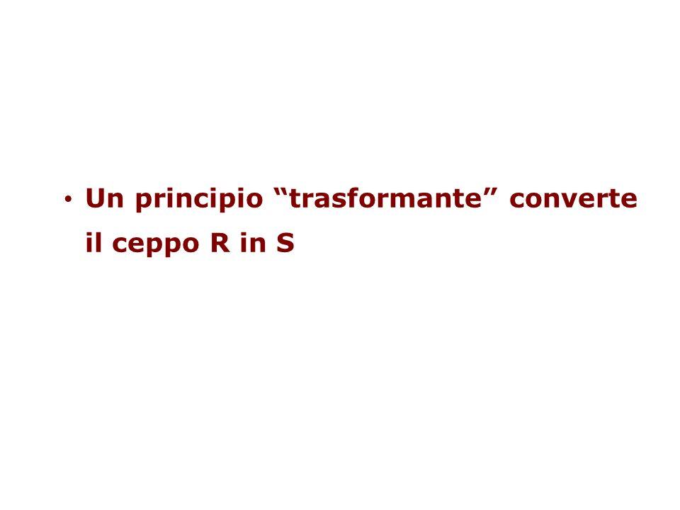 Un principio trasformante converte il ceppo R in S