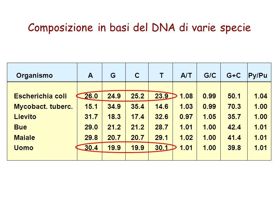 Composizione in basi del DNA di varie specie