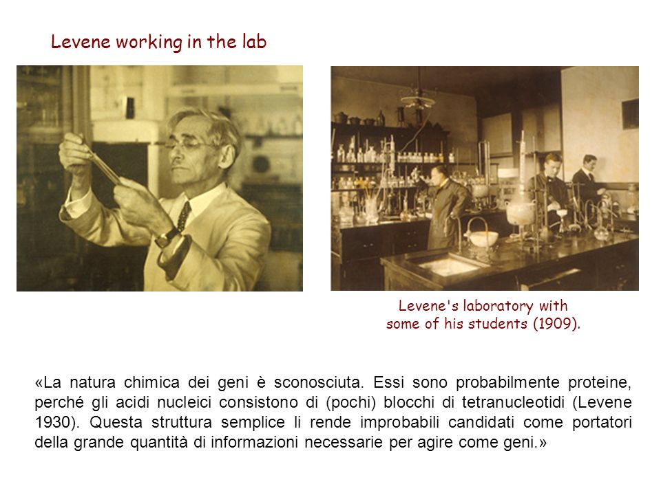 Levene s laboratory with