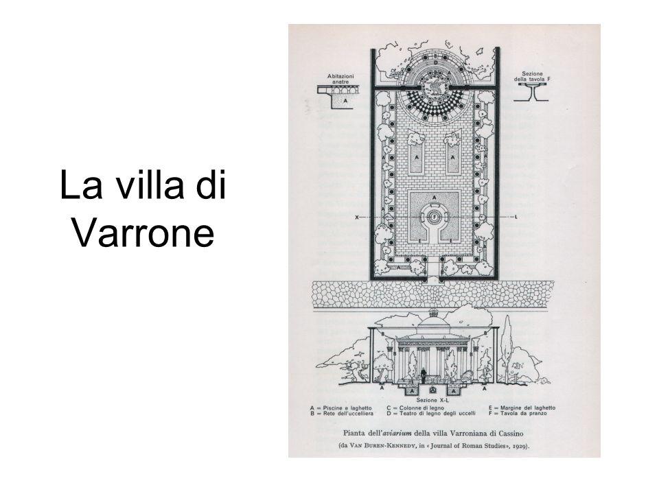 La villa di Varrone