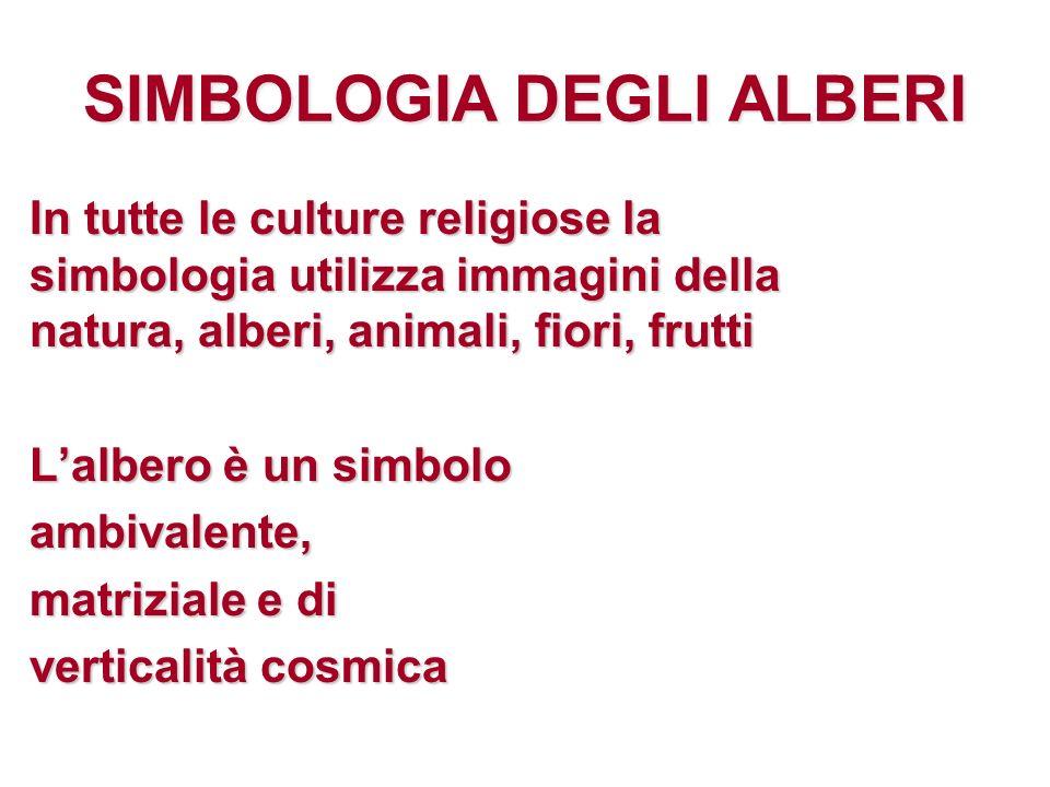 SIMBOLOGIA DEGLI ALBERI