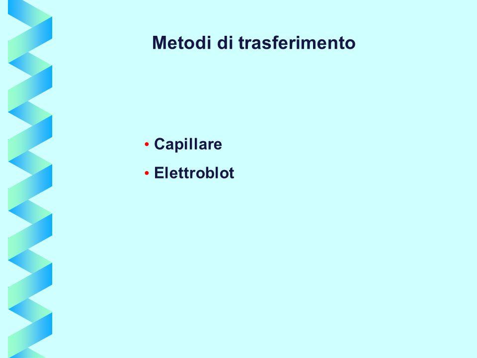 Metodi di trasferimento