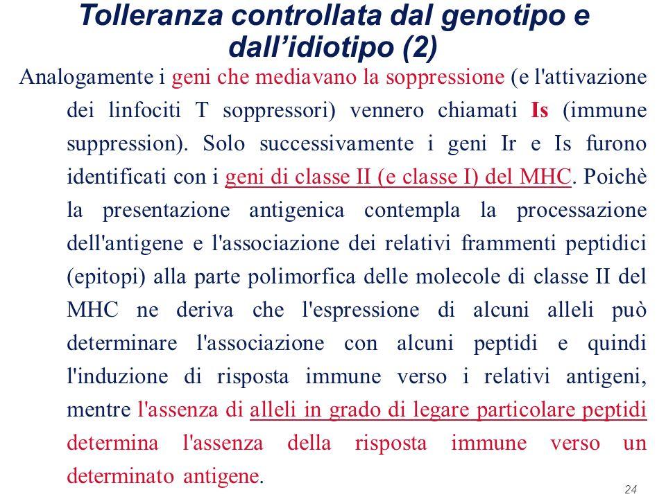 Tolleranza controllata dal genotipo e dall'idiotipo (2)