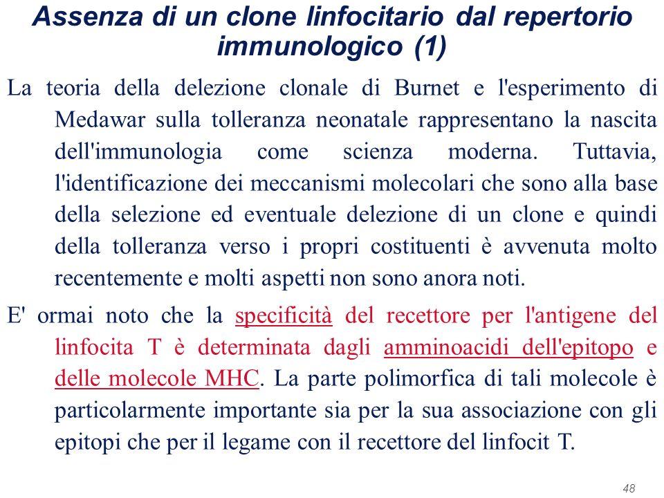 Assenza di un clone linfocitario dal repertorio immunologico (1)