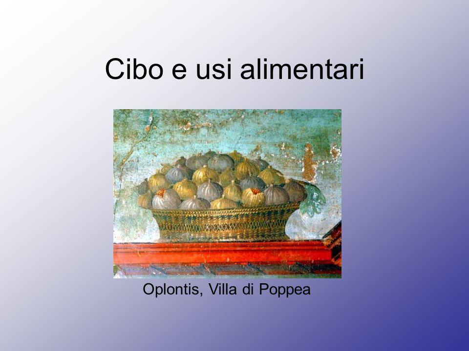 Oplontis, Villa di Poppea