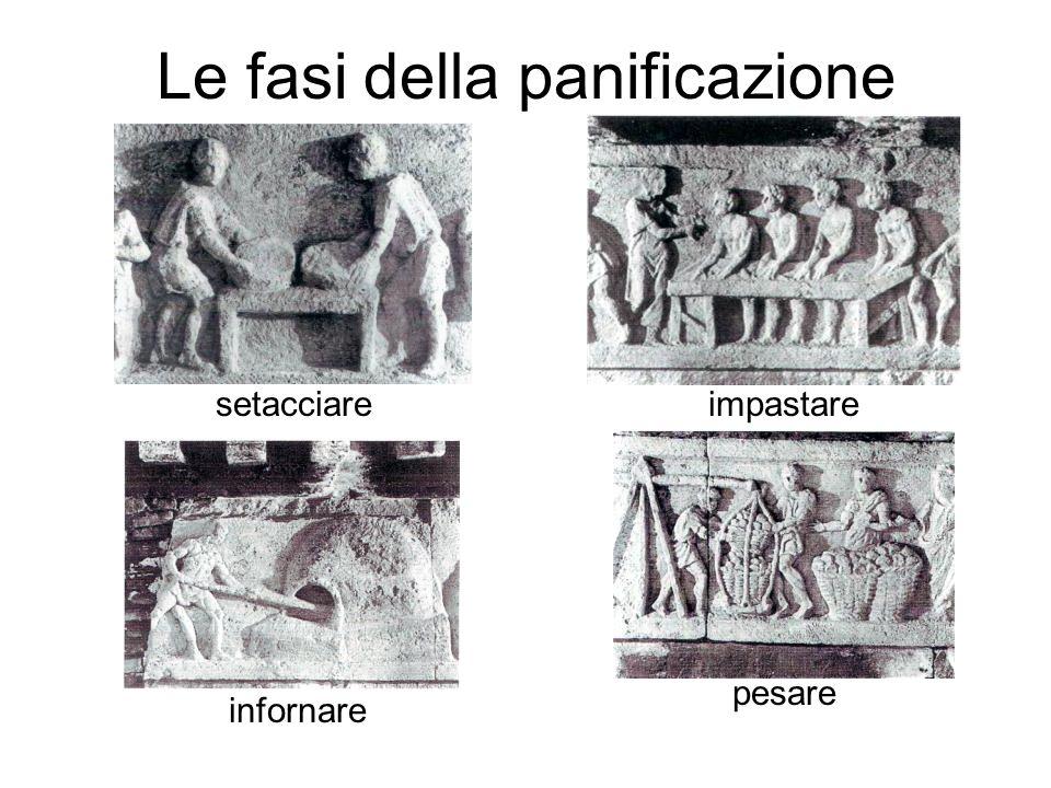 Le fasi della panificazione