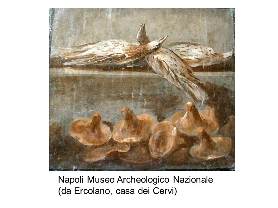 Napoli Museo Archeologico Nazionale