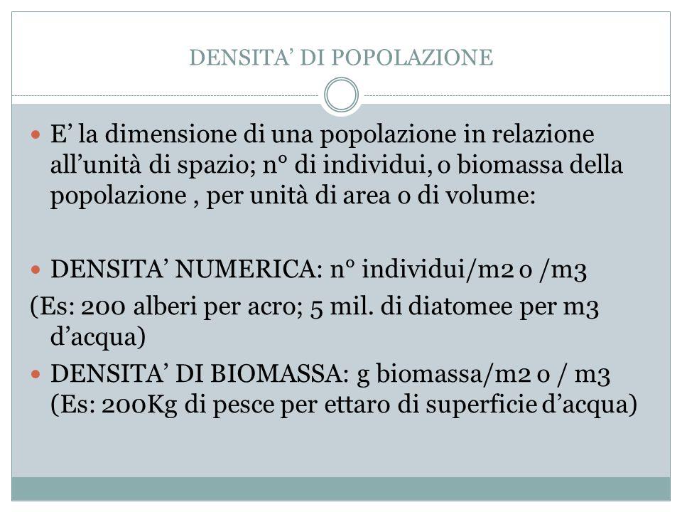 DENSITA' DI POPOLAZIONE