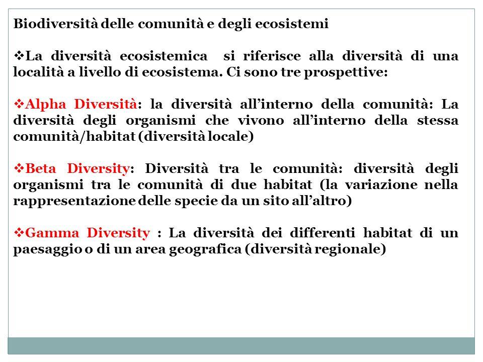 Biodiversità delle comunità e degli ecosistemi