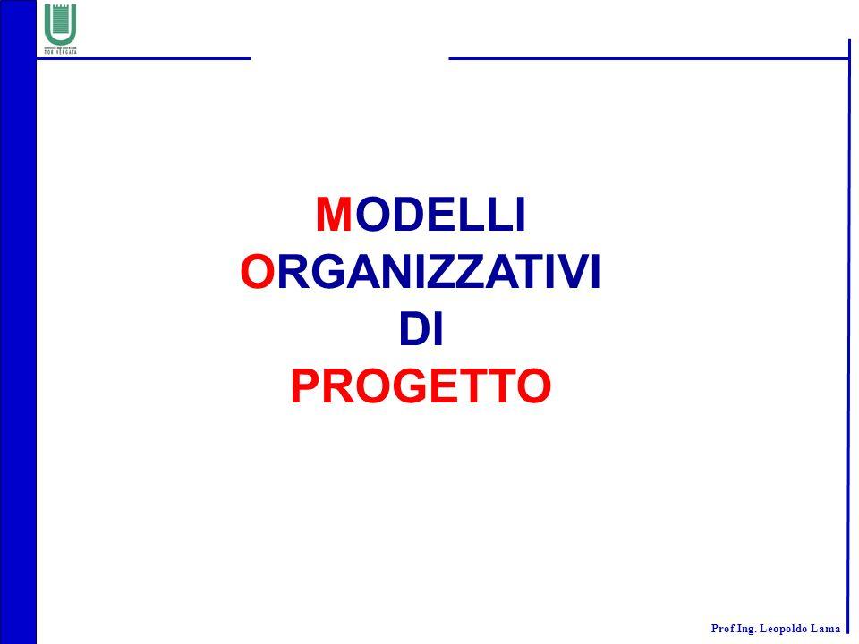 MODELLI ORGANIZZATIVI DI PROGETTO