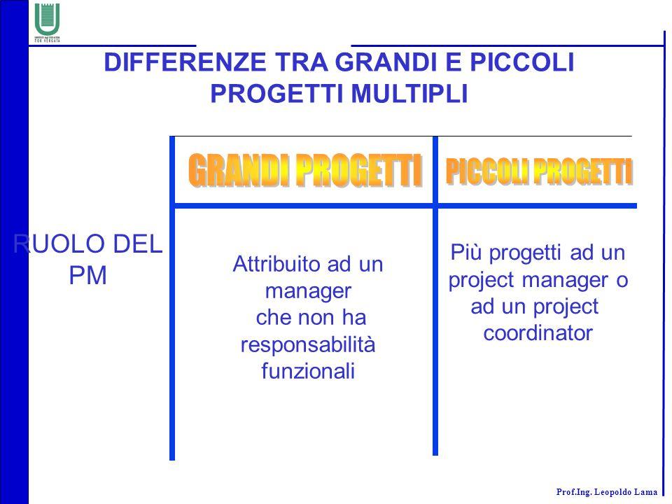 DIFFERENZE TRA GRANDI E PICCOLI PROGETTI MULTIPLI