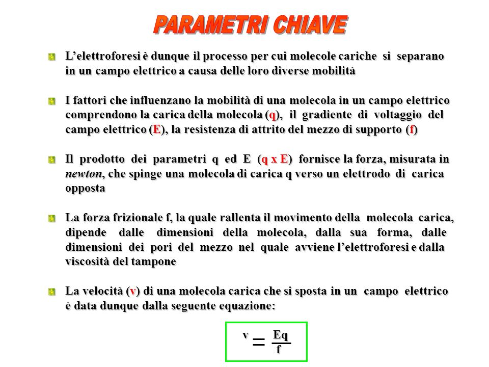 PARAMETRI CHIAVE L'elettroforesi è dunque il processo per cui molecole cariche si separano.