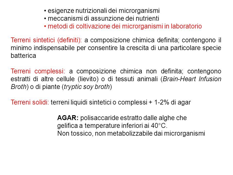 esigenze nutrizionali dei microrganismi