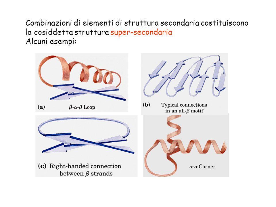 Combinazioni di elementi di struttura secondaria costituiscono la cosiddetta struttura super-secondaria