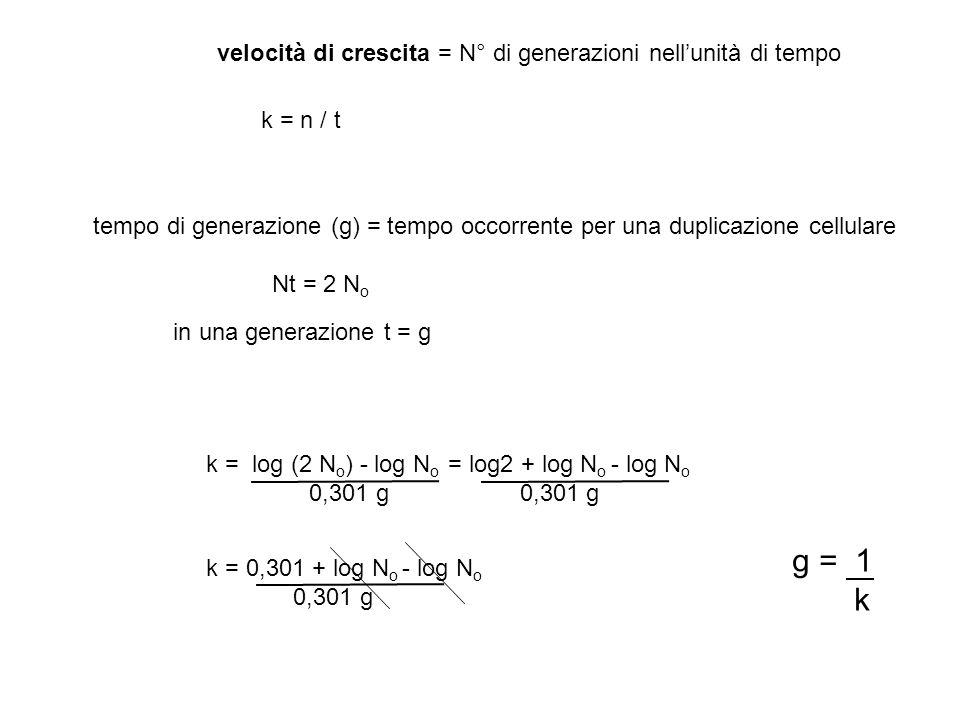 g = 1 k velocità di crescita = N° di generazioni nell'unità di tempo