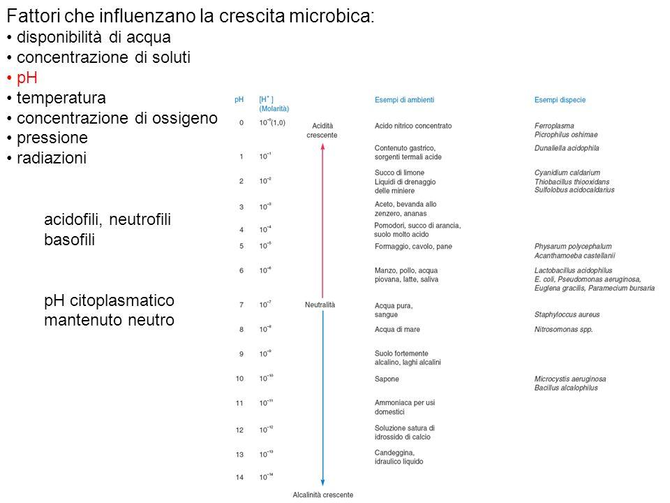 Fattori che influenzano la crescita microbica: