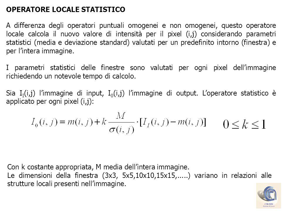 OPERATORE LOCALE STATISTICO