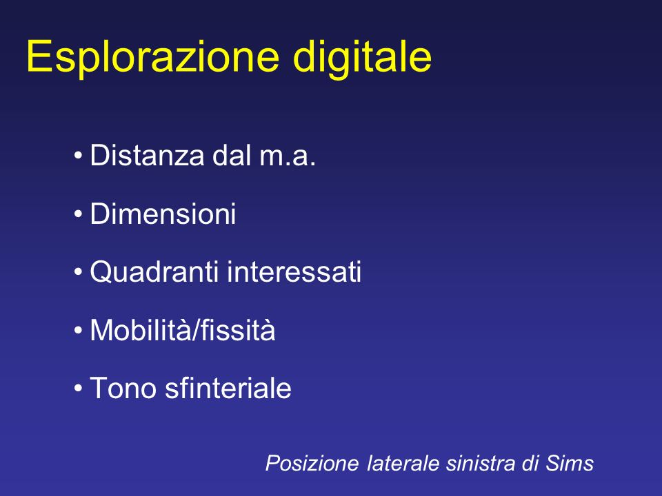 Esplorazione digitale