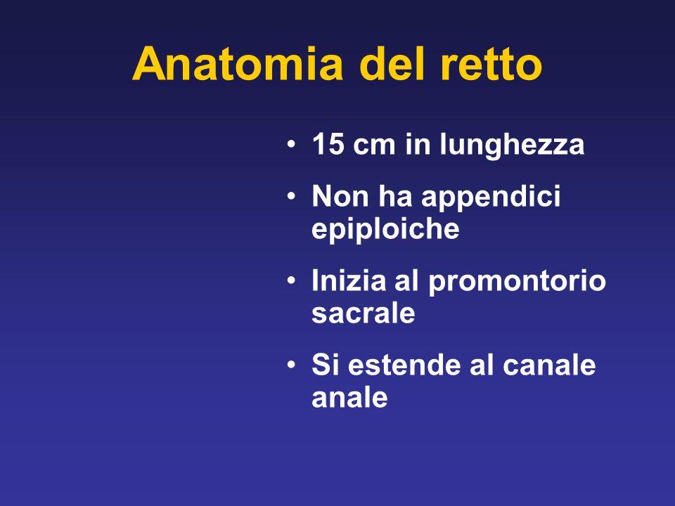 Anatomia del retto 15 cm in lunghezza Non ha appendici epiploiche