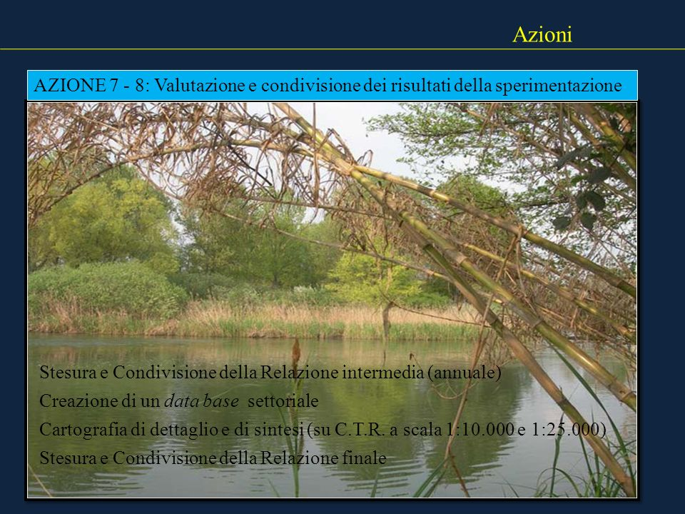 Azioni AZIONE 7 - 8: Valutazione e condivisione dei risultati della sperimentazione. Stesura e Condivisione della Relazione intermedia (annuale)