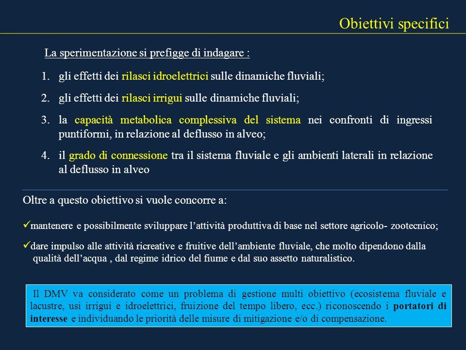 Obiettivi specifici La sperimentazione si prefigge di indagare :