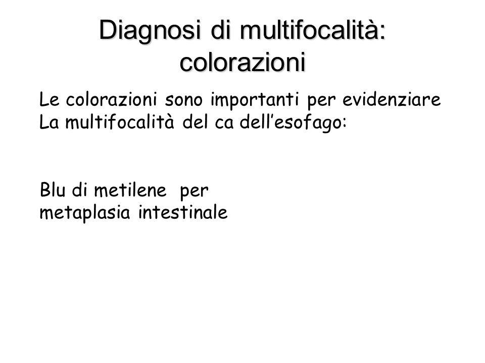 Diagnosi di multifocalità: colorazioni