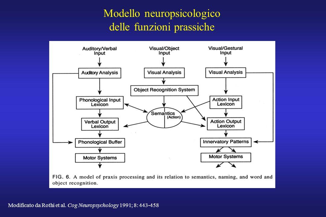 Modello neuropsicologico delle funzioni prassiche