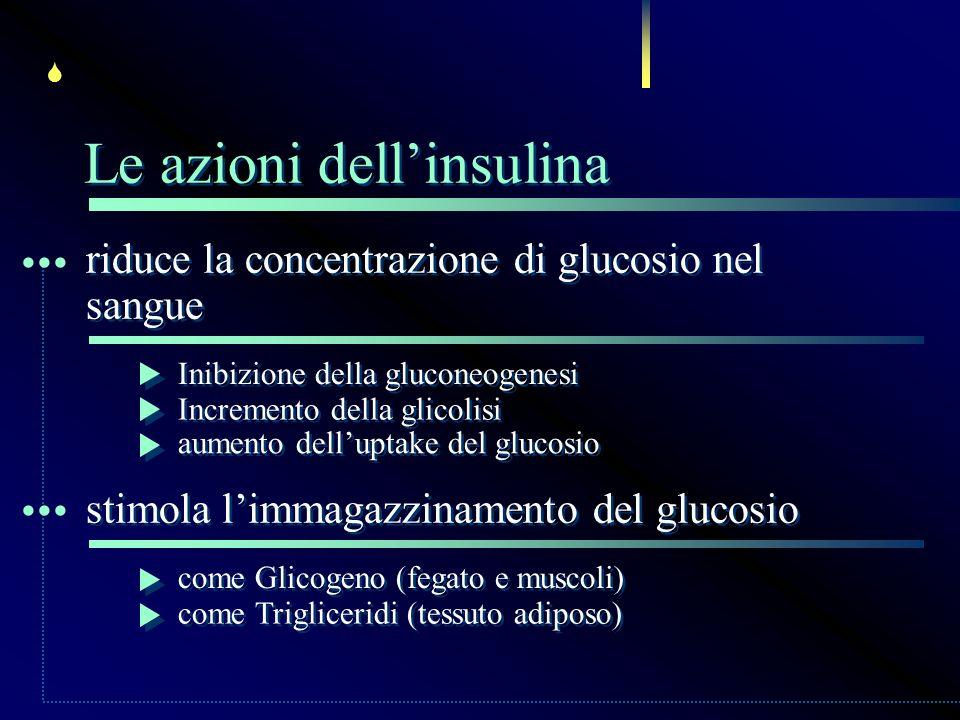 ... ... Le azioni dell'insulina